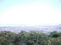 一本松公園からの景色