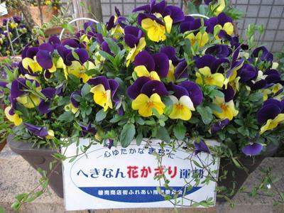 blog527.JPG