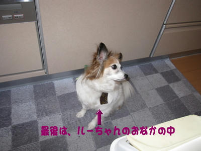 blog579.JPG