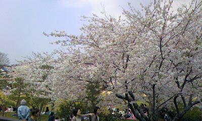 April.11_3.jpg
