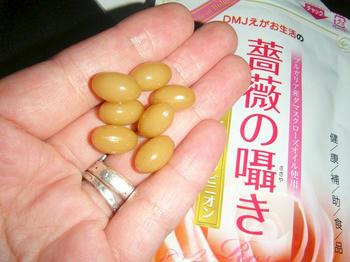 DMJえがお生活 薔薇の囁き ローズ&シャンピニオン