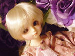 110212_sumika_03.JPG