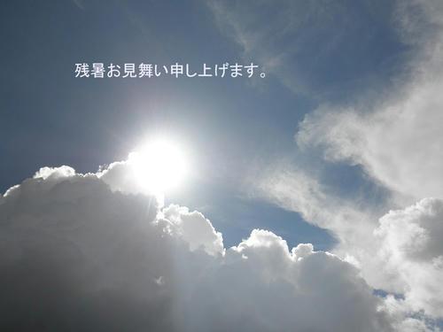 P8170292.jpg