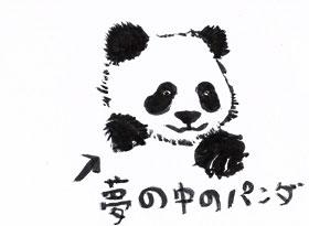 http://file.hahahahahahahaha.blog.shinobi.jp/Scan10092.jpg