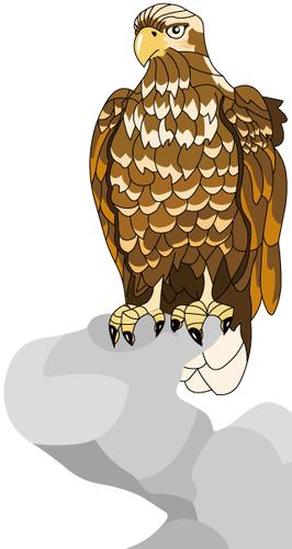 無料素材 無料イラスト 鷲 eagle Free download picture