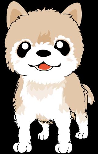 無料 素材 イラスト ポメラニアン Free Pomeranian