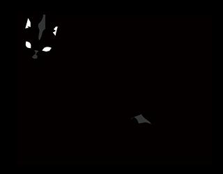 無料素材 黒猫 Free Black cat