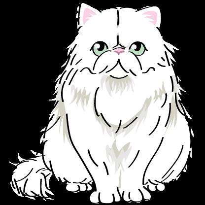 猫 ペルシャ猫 Persian cat