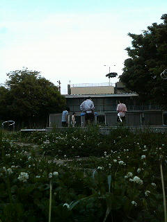 20080507.jpg