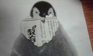 100404_2111_01.jpg