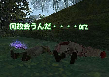 0b079687.jpg