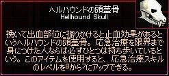 ヘルハウンドの頭蓋骨!