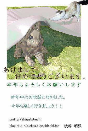 nennga_2011_web.jpg
