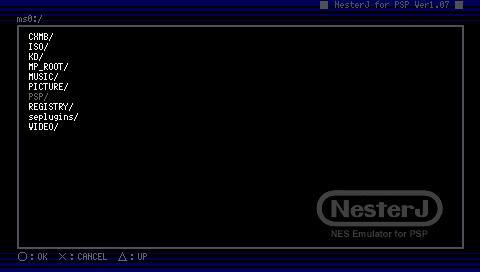 IWFP-NES.jpg