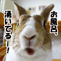mixi_friend_furo.jpg