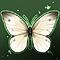 butterfly_icon.jpg