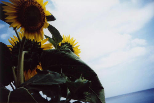 Photo00197.JPG