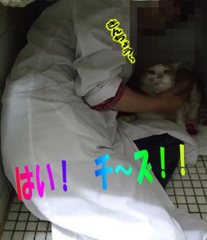 記念写真だねパチッ☆-(^ー'*)bオッケー♪