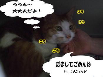 仲直り(^∧^) ゴメンゴメーン