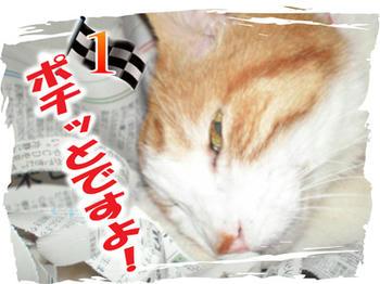 ミ★(*^-゚)v Thanks!!★彡
