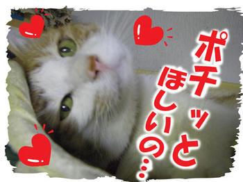 アリガト♪(*'-^)-☆パチン