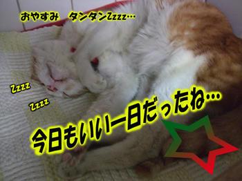 お決まりのきのこちゃんヽ(*^^*)ノ