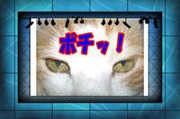 Thanks ☆☆** v(o^▽^o)v**☆☆