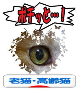 アリガト ウフッ♪(*~ё~)ノ