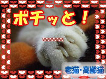 ゚★('-^v)Thanks(v^-')★。.:*: