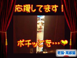 アリガト エヘ♪(*^・^)ノ