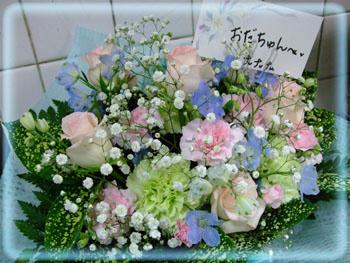 キレイな御花…