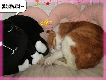 (θωθ)おやすみ~☆