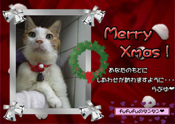 ('ー'*)Merry*Christmas(*'ー')o
