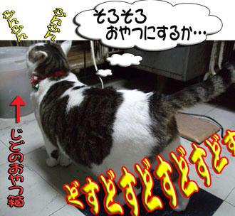 """ヾ(*`Д´*)ノ""""彡☆ ケシカラン!!"""