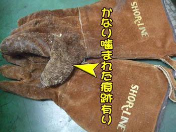 年季モノの皮手袋