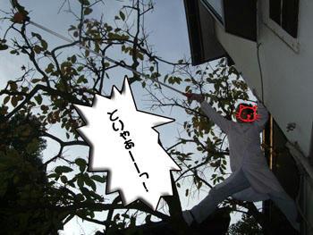 ( ゚-゚)( ゚ロ゚)(( ロ゚)゚((( ロ)~゚ ゚ナント!!!