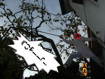ゴシゴシ(-_\)(/_-)三( ゚Д゚) ス、スゲー!