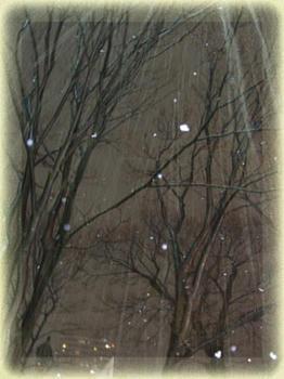 大雪だ~( ̄○ ̄;)ウォー!