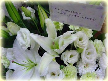 真っ白な御花…