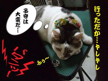 お疲れさぁ~ん(*^^)v