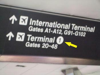 やった~、第1ターミナル発見!!