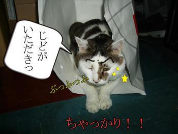 Σ(`д`ノ)ノ ヌオォ!!いつの間に?