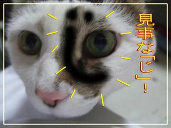 ぶはっは~、顔にも「じ」がッ!!