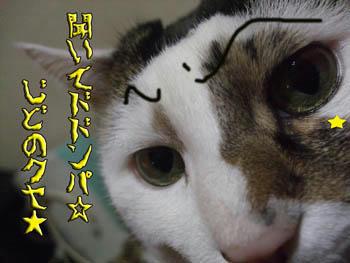 「ちょっと、ちょっと~」(りっこ風)、眉毛、細くね?