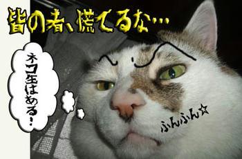 あ、そーー…、ネコ缶はあるもんね( ̄‥ ̄)=3 フン