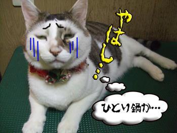 (´∀`)(∀` )(` )( )( `)( `д)(`д´)ゴルァァァァァ