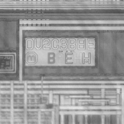 OmniVision-dirmrk.jpg