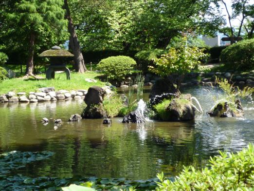 池(沼?)。小学生のとき、ふざけていてこの沼に落ちたバカがいた。