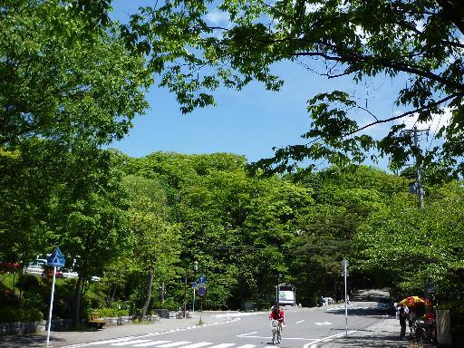 千秋公園の入り口あたり。