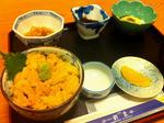 shinsei1